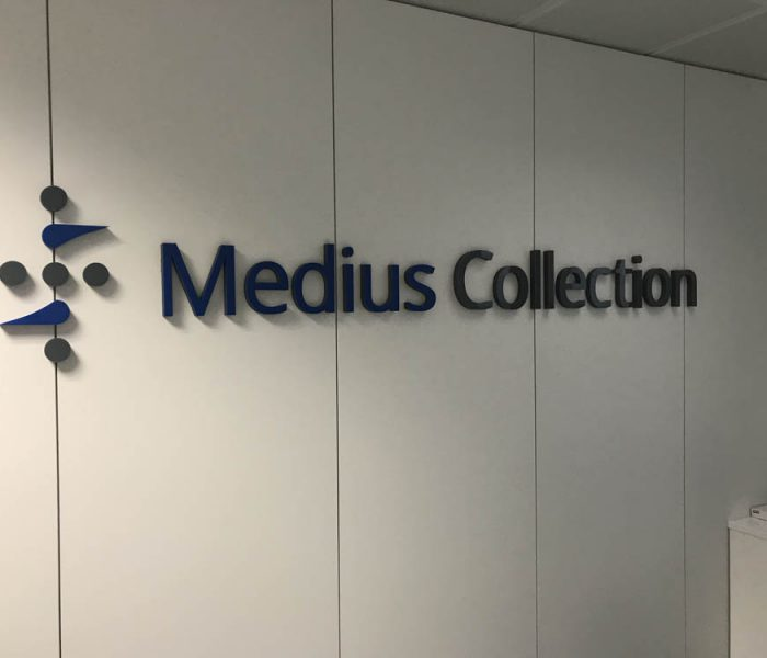 diseño de oficinas para Medius Collection- imagen 1- Office Design