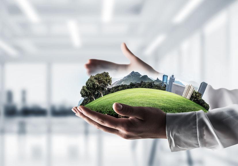Oficinas ecológicas: Características